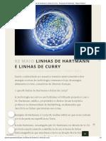 Linhas de Hartmann e Linhas de Curry - Terapeuta de Ambientes - Miguel Heilborn