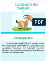 ULTRASONIDO EN CABRAS