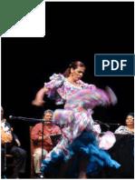 Cruces Roldan - El flamenco como objeto de deseo