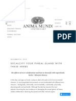 Decalcify your pineal gland with these herbs – Anima Mundi Herbals