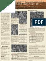 Irradiation.pdf