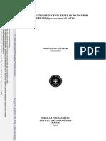 2010mal (1).pdf