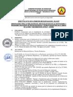 directiva finalizacion 2019 ugel sil