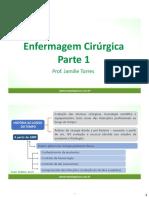ENFERMAGEM CIRURGICA.pdf