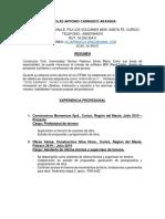 Curriculum Nicolas Carrasco