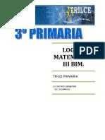 LOG.MAT.  III BIM