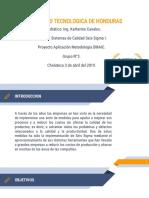 AGROLIBANO-PROYECTO.pptx