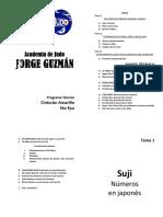 01.-Programa Técnico Guía Cinturón Amarillo