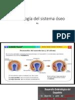 Embriología del sistema óseo.pptx
