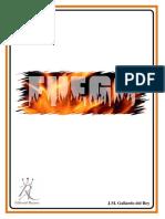 Gallardo del Rey - Fuego.pdf