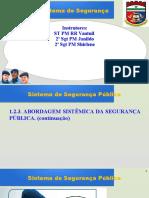 1.2.3.6 Sistema de Segurança Pública e Gestão Integrada e Comunitária - Módulo 1 - Campos Institucionais e Organizações Institucionalizantes