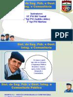 2. Sistema de Segurança Pública e Gestão Integrada e Comunitária - Módulo 2
