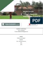 Planificacion 2º grado