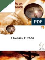 LUIZ-CEIA-1.pptx