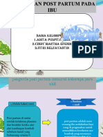 PPT Asuhan post partum