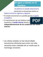 1. El hombre como sistema integrado(3).pdf