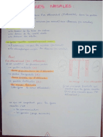 2. Appareil Respiratoire (1) (Pr HAMMOUDI)