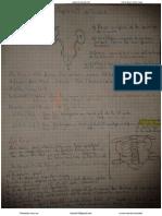 4. Appareil Urinaire (2) (Pr HAMMOUDI)
