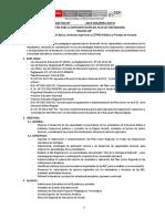 Directiva PLAN LECTOR REGIONAL 2018 (7)