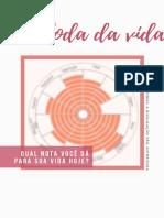 template-Roda-da-vida