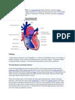Patent Ductus Arteriosus New