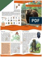 634992438451109157_COEX_leaf_bear_I.pdf