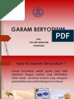PPT GARAM BERYODIUM
