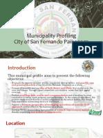 SFP Profiling Report.pptx
