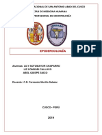 1 monografia_epidemiologia modificado