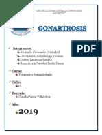 Monografia de Gonartrosis