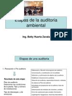 Etapas de la auditoria ambiental.pdf