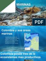 AguasMarinas