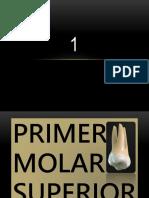 1molarsup xd.pptx