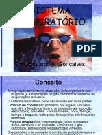 RESPIRATÓRIO ANATOMIA E FISIOLOGIA_novo