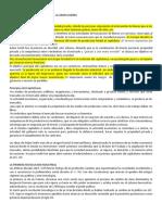 Documento de Lucas Enzo Pérez.docx