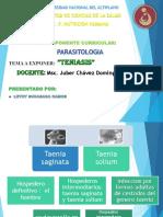 TENIASIS EXPO.pptx