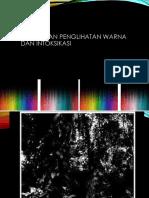 Diskromatopsia 43