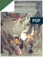 A construção do campo pictórico das obras de artes.pdf
