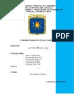 TecCar-Cuy en salsa de Maní_(Informe).pdf