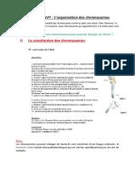 Chapitre 2  SVT l'organisation des chromosomes