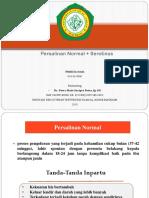 PPT CBD SEROTINUS