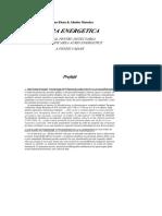DocGo.Net-Aura Energetic - Doina, Aliodor Manolea