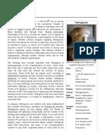 Notes on Author Pythagoras