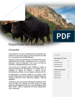 PIB_CESAR.docx