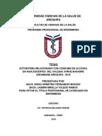 fernandez-begazo-diego.pdf