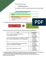 practica de plan de gobierno-xiomi saboya.pdf