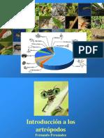 1 y 2 Introducción Panarthropoda 2019