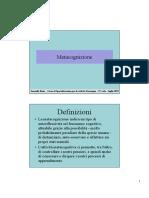 didattica metacognitiva