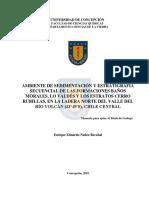Tesis_Ambiente_de_sedimentacion_y_estratigrafia .Image.Marked.pdf