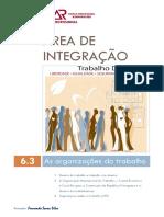 As Organizações do trabalho.pdf